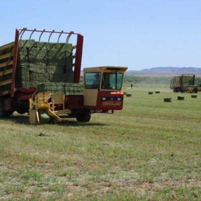Snake Ranch Farm balewagon picking up small hay bales
