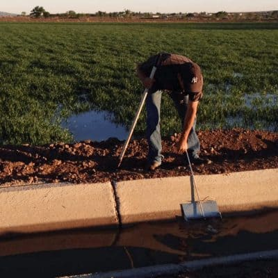 Snake Ranch Farm irrigating from a cement lined ditch