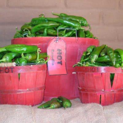 Snake Ranch Farm Hot Sandia green chiles