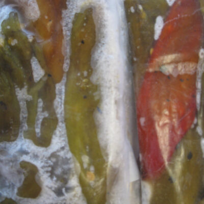 Close up of frozen green chiles